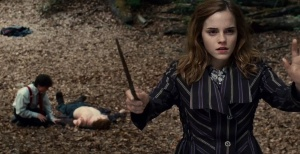 harry-potter-and-the-deathly-hallows-part-1-image3
